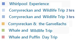 Our Trips